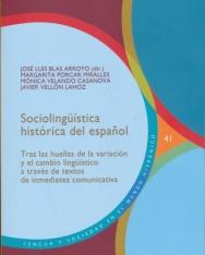 Sociolingüística histórica del espanol: tras las huellas de la variación y el cambio lingüístico a través de textos de inmediatez comunicativa