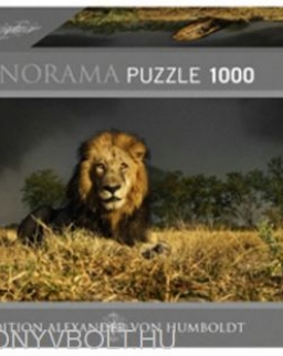 Heye Panorama Puzzle 1000 - Lion