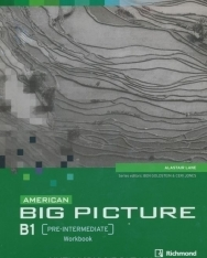 American Big Picture Pre-Intermediate  Workbook + Audio CD