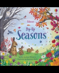 Anna Milbourne: Pop-Up Seasons Board book