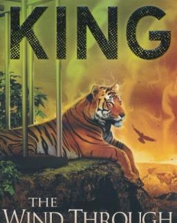 Stephen King: The Wind Through the Keyhole: A Dark Tower Novel