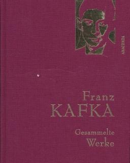 Franz Kafka: Gesammelte Werke