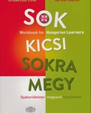 Sok kicsi sokra megy - Workbook for Hungarian Learners