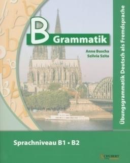 B Grammatik mit Audio CD - Übungsgrammatik Deutsch als Fremdsprache Sprachniveau B1-B2