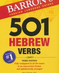 Barron's 501 Hebrew Verbs Third Edition