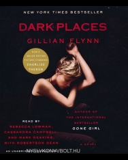 Gillian Flynn: Dark Places - Audio Book (11CDs)