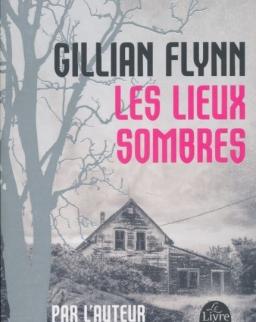 Gillian Flynn: Les lieux sombres