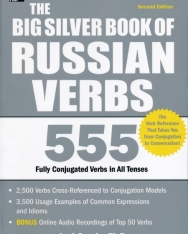 The Big Silver Book of Russian Verbs - 555 Fully Conjugated Verbs in All Tenses