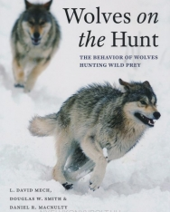 Wolves on the Hunt: The Behavior of Wolves Hunting Wild Prey