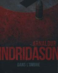 Arnaldur Indridason: Dans l'ombre