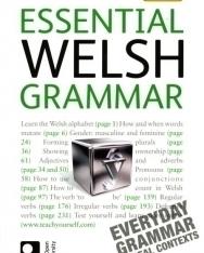 Teach Yourself - Essential Welsh Grammar