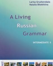 A Living Russian Grammar 2  Intermediate